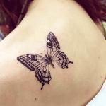 Significado De Los Tatuajes De Mariposas Transformación