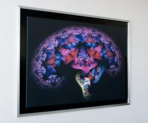 Cognitive-Neuro-Sciences-20070223-175123-485