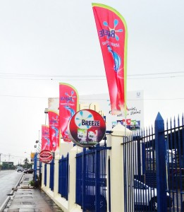 flag gallery img 4
