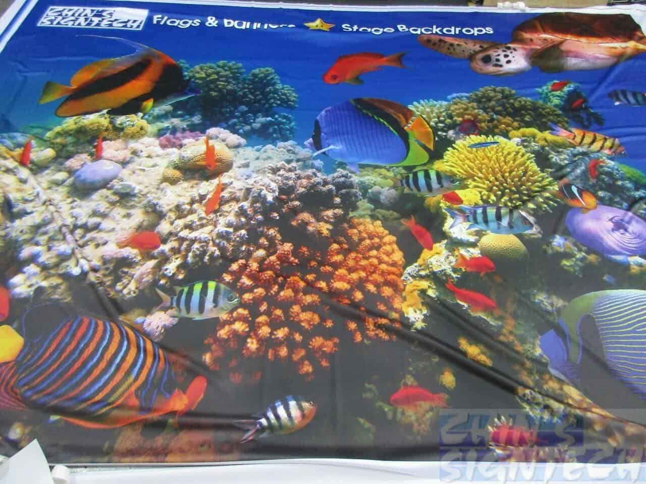 16 x 10ft Fabric printing on underwater world with fish