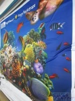 16 x 10ft Fabric printing on underwater world with fish (2)