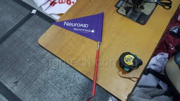 Tour guide flag with telescopic pole