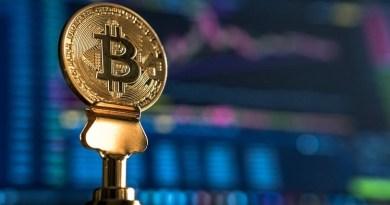 Dijital Çağın Güvencesi: Kripto Para Sigortaları