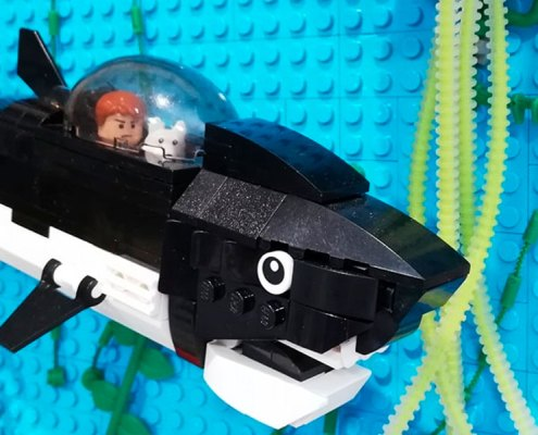 Detalle El tesoro de Rackham el Rojo Lego