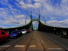 Puente de cadenas