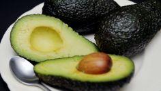 شركة إسبانية تعتزم طرح نوع من ثمار الأفوكادو منخفض الدهون