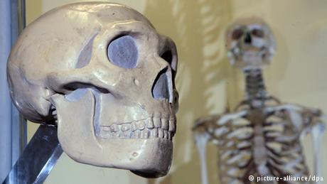 عظامنا خفيفة رغم صلابتها