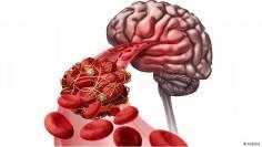 كيف يجدد الصوم خلايانا ويشفي أجسامنا؟
