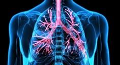 """الجهاز التنفسي – منها الضحك والغناء… 5 طرق """"سهلة"""" لرفع كفاءة الرئتين"""