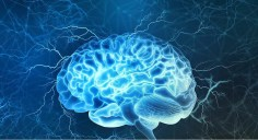 العلماء يكتشفون دواء يستهدف الخلايا السرطانية من داخل الدماغ