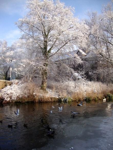 So pretty - Alkmaar