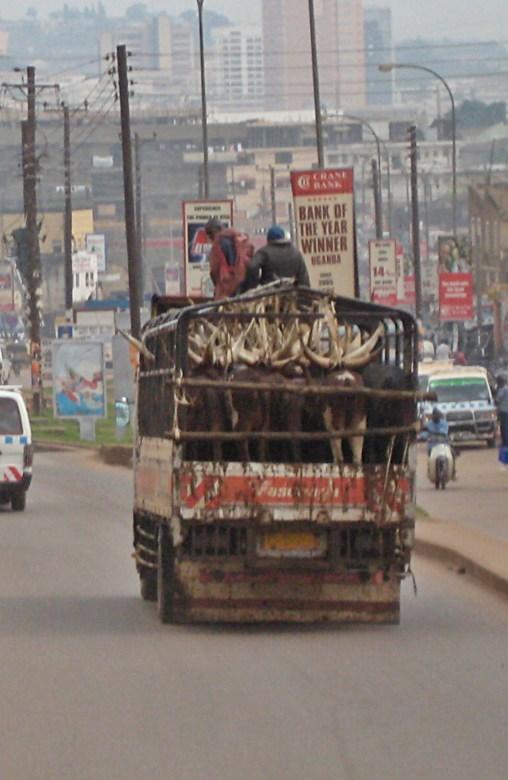 Uganda, Kampala