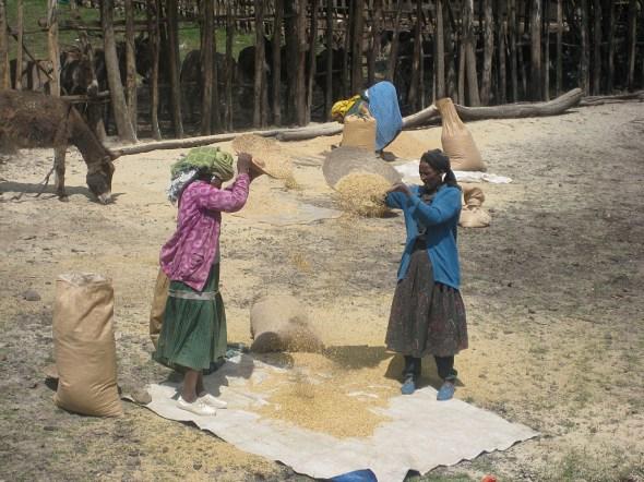 Women hard at work