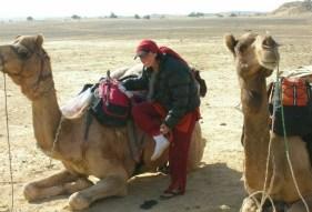 Maggie-the-Mom camel,  Thar Desert, India