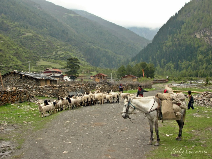 Tibetan town ,China
