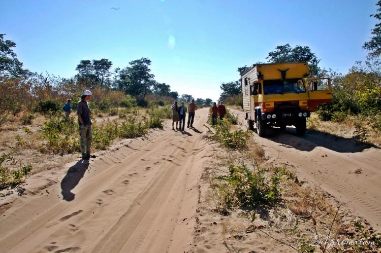 Chobe National Park.