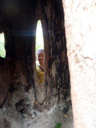 cute little cambodian girl taking a peek through the tree