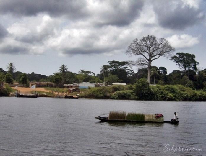 Cote d_Ivoire