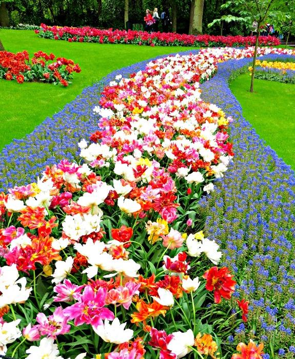 Keukenhof Flower Gardens, Netherlands