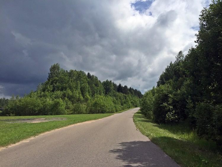 tree lined roads, Belarus