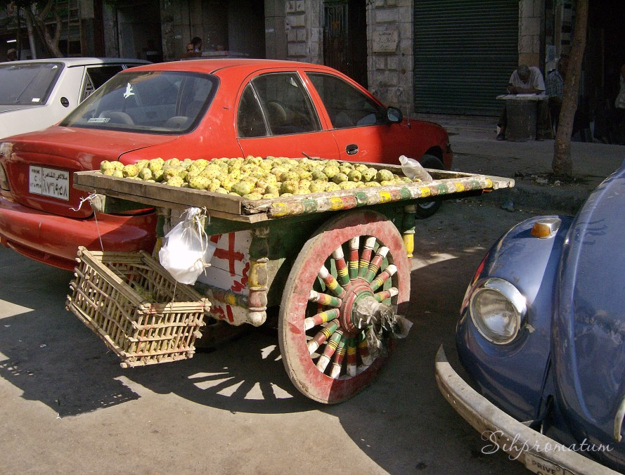 fruit stand Cairo