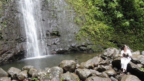 USA, Manoa Falls, Oahu, Hawaii