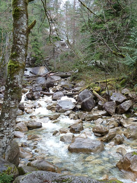 One of many lovely rivers in BC