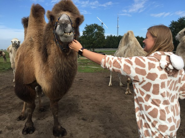 Amy with a camel