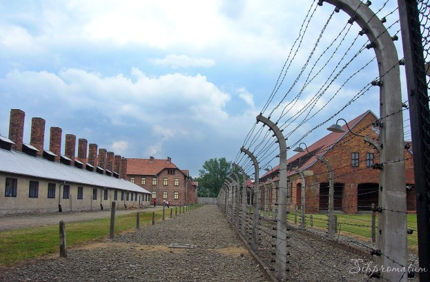 Poland concentration camps