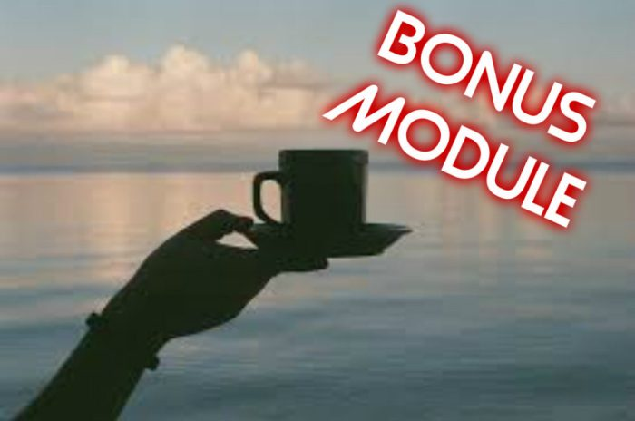 bonus module