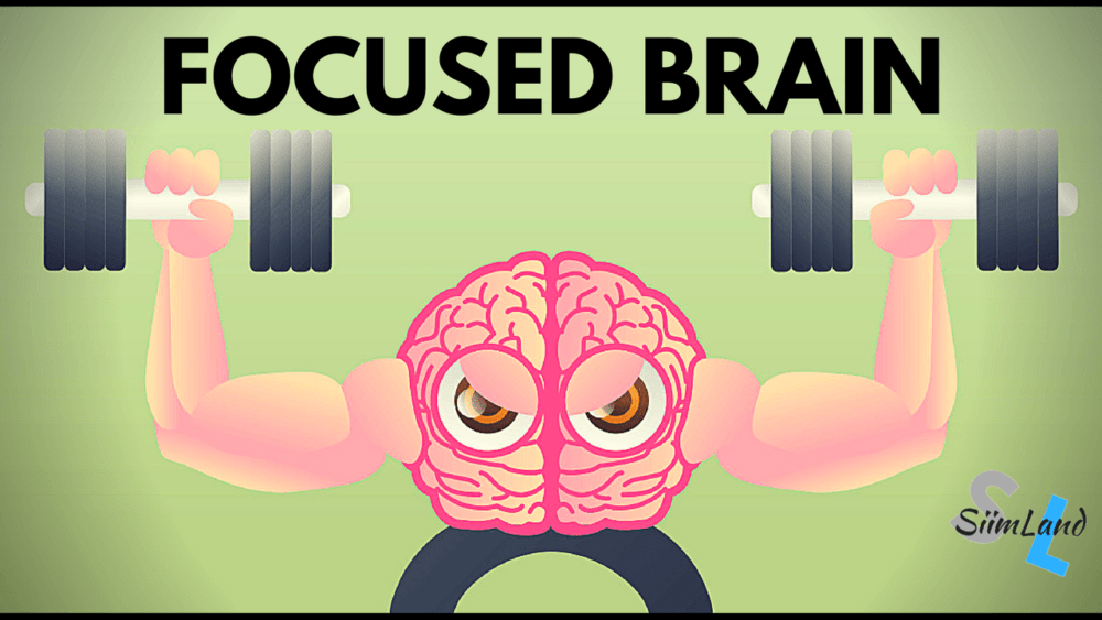 how to train your brain to focus