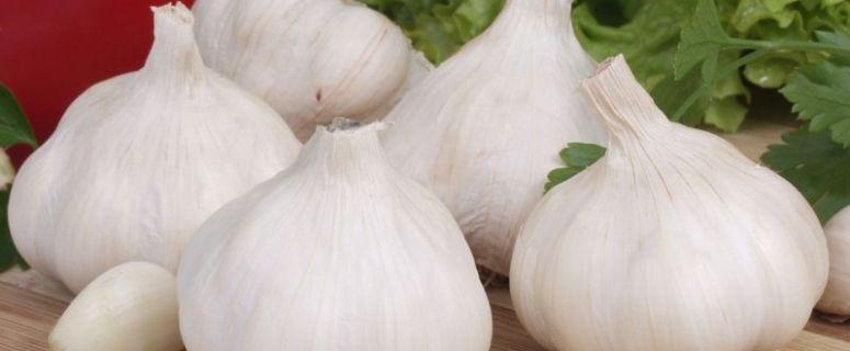 khasiat bawang putih