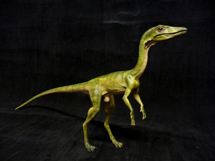 Compsognathus, Si Dinosaurus Ayam