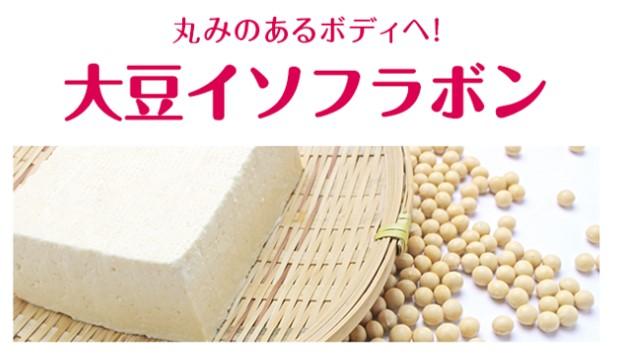 グラミープラスの成分⑥大豆イソフラボン
