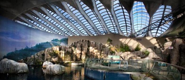L'Insectarium-le-Biodôme-et-le-Jardin-botanique-cherchent-architectes-créatifs.png