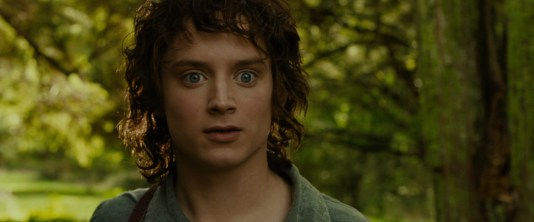 lotr1-movie-screencaps-com-1044