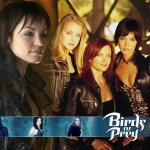Birds of Prey, the Television Series