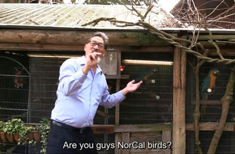 NorCal's 40th Gala