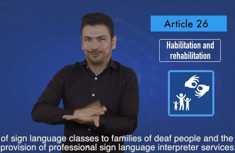 2. articles 26 Habilitation and rehabilitation