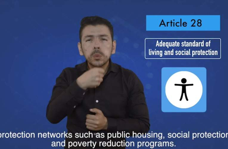 2. articles 28 Adequate standard of living and social protection