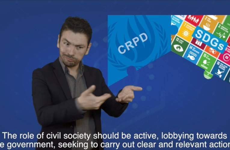 6. Connections between the CRPD and the SDGs