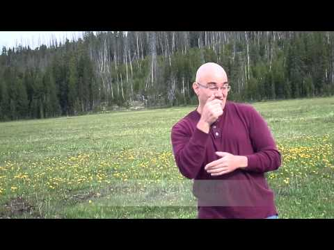 """William Wordsworth's """" I Wandered Lonely As A Cloud"""" translated into ASL"""