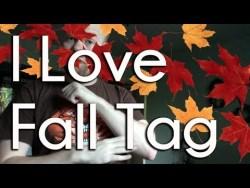 I Love Fall Tag (tagged by the Princess)