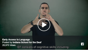 Early Access to Language Image