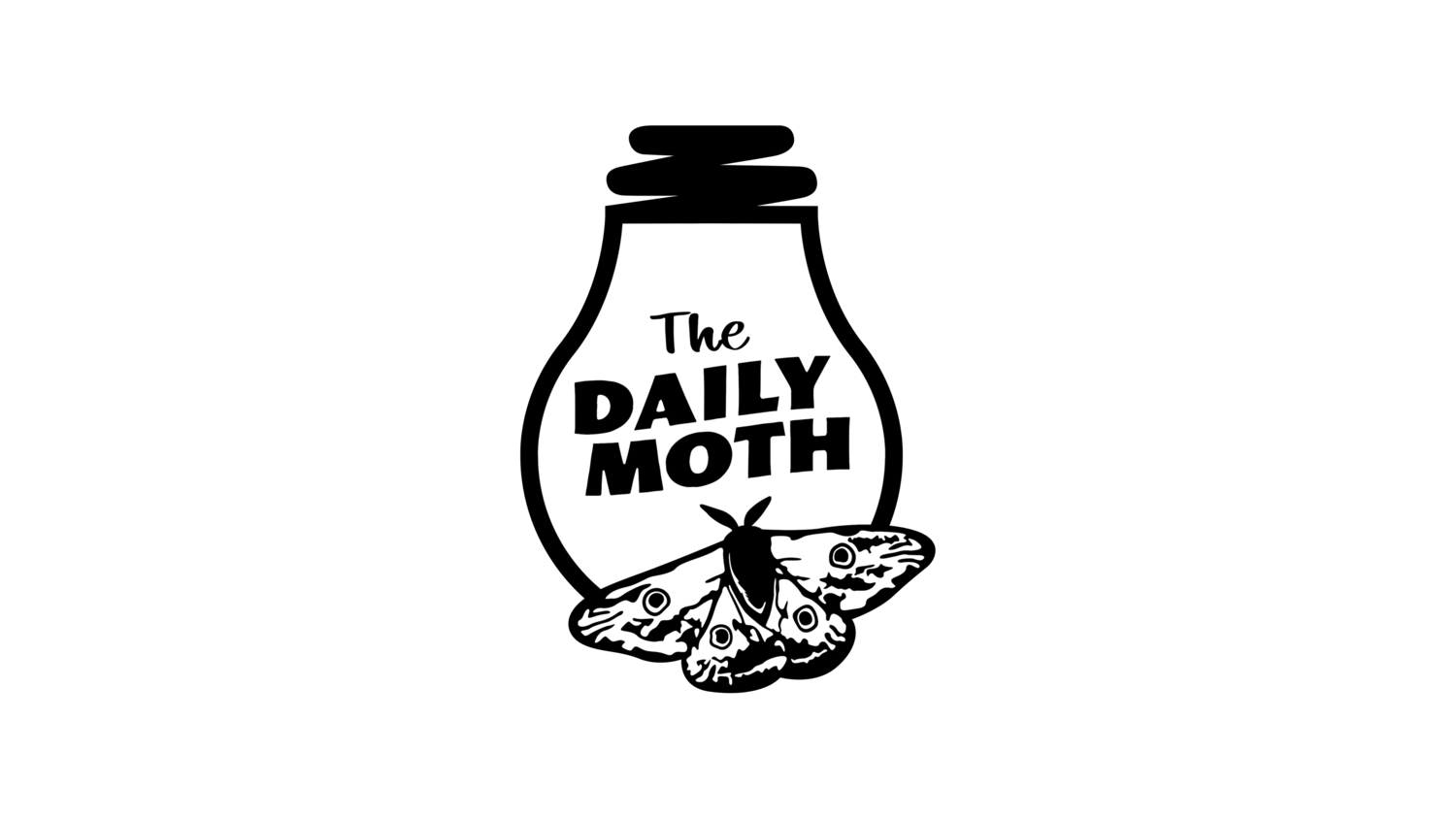 "A drawing of a moth sitting on a lightbulb. The texts read ""the daily moth"""