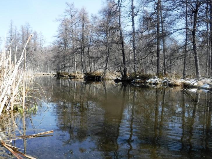 Easter kayak trip in the forgotten areas of big Cedar lake