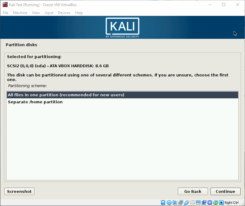 Kali OS Install Partitions