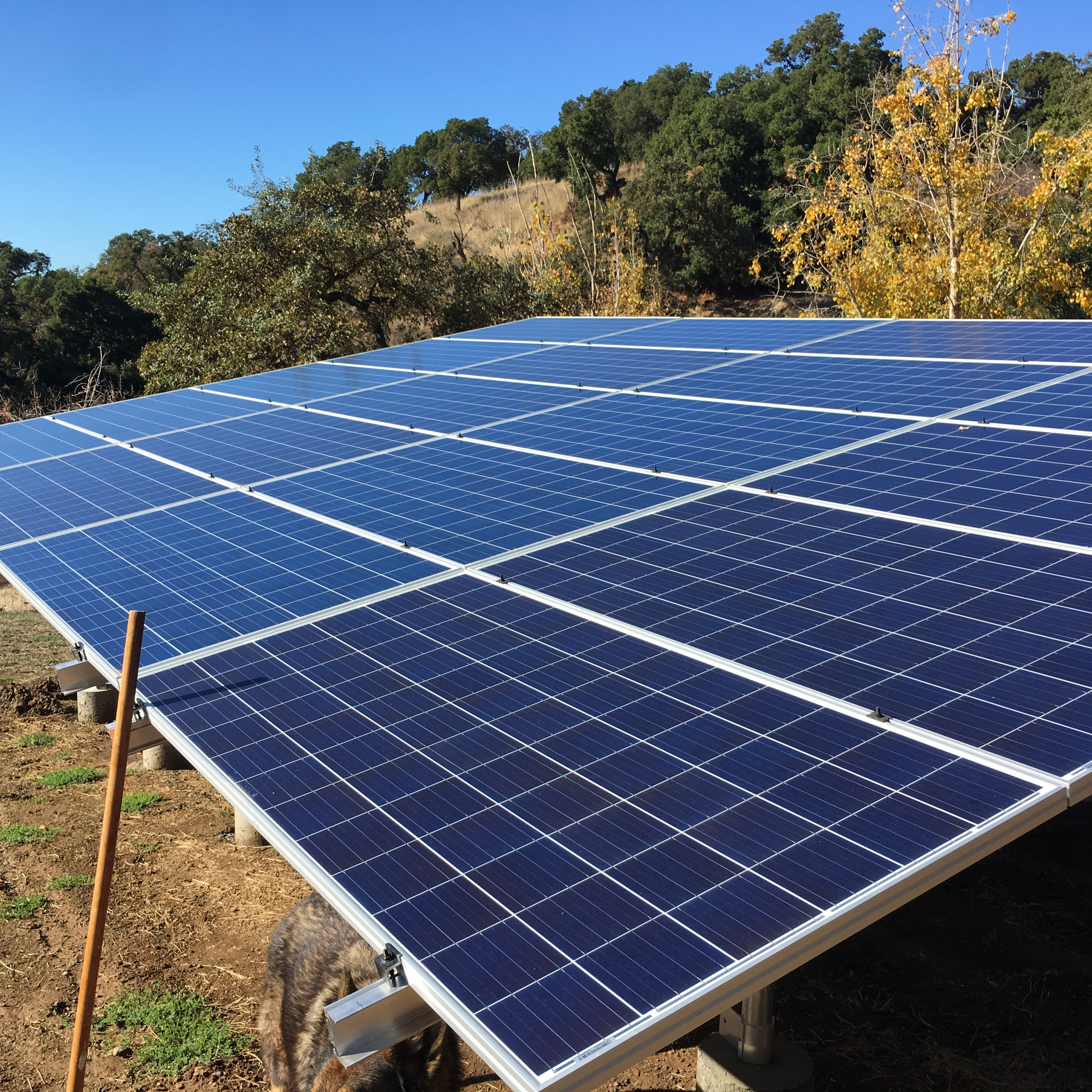 Solar Panels Provide Ever Increasing Benefits To Non Owner