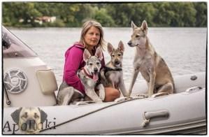 Meine Bootshunde Aracho, Asteri (Aria) und Mama Delphi