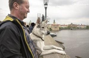 Aracho on sightseeing tour in Prag – Czechoslovakia.